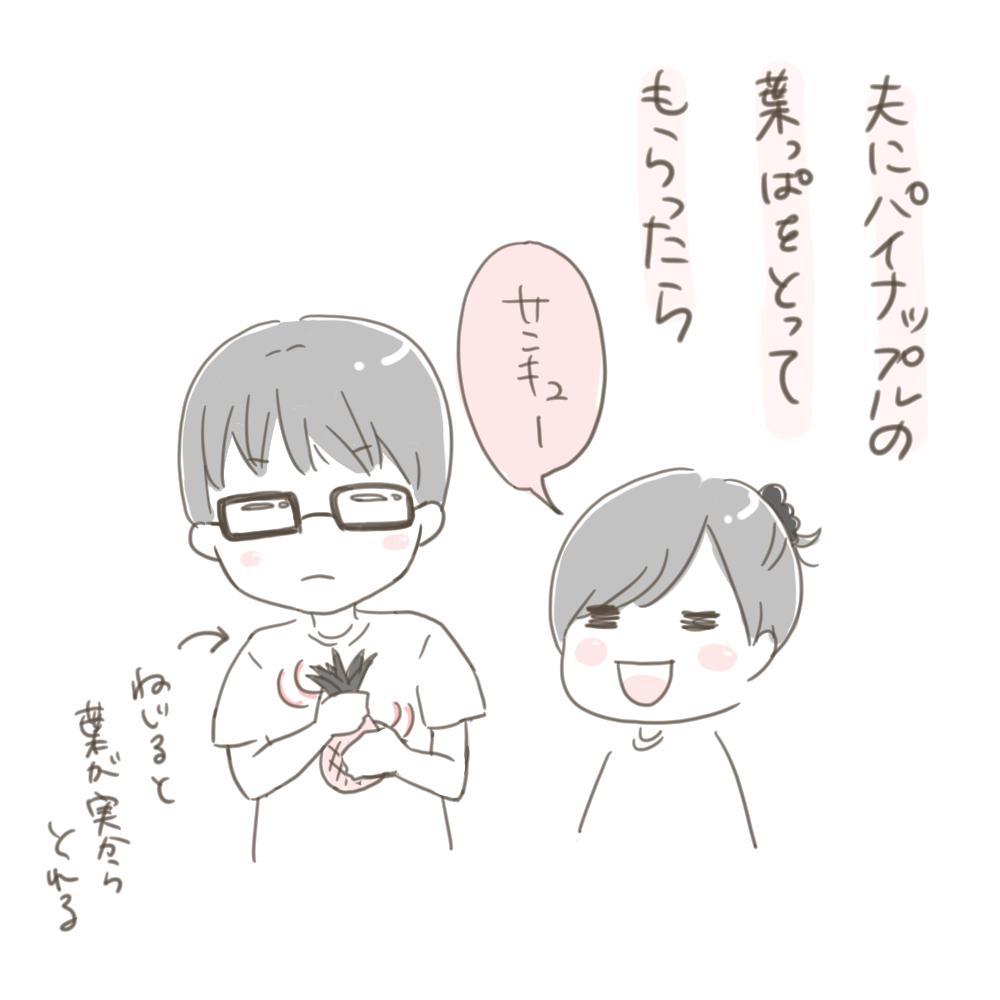 f:id:aikimama:20180528114435j:plain