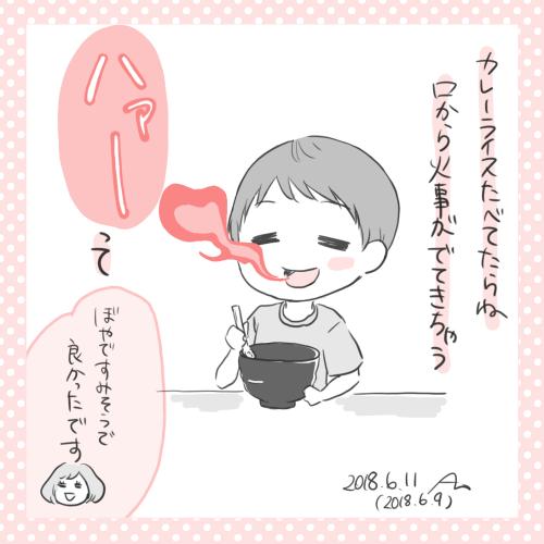 f:id:aikimama:20180611170718j:plain